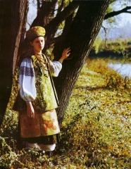 Жіноче вбрання Чернігівщини, НІЕЗП