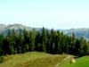 Краєвид з гори Довбушєнки