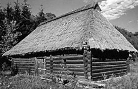 Стодола поч.20 ст. з Бойківщини, НМНАПУ