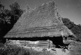 Стайня кін.19 ст. з Бойківщини, НМНАПУ