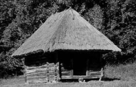 Комора поч.20 ст. з Буковини, НМНАПУ