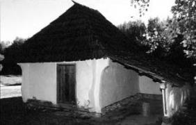 Хижа (комора) 19 ст. з Буковини, НМНАПУ
