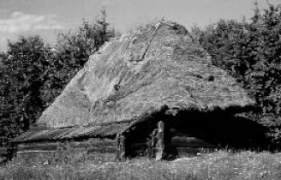 Пастирка (зимарка) сер.19 ст. з Гуцульщини, НМНАПУ