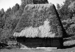 Хата 17–18 ст. з Закарпаття, НМНАПУ