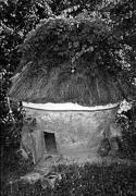 Курник поч.20 ст. з Хмельниччини, НМНАПУ
