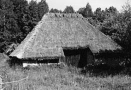 Клуня поч.20 ст. з Одещини, НМНАПУ