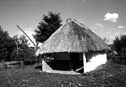Комора поч.20 ст. з Одещини, НМНАПУ