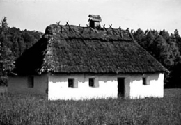 Хата-шкальня (шинок) сер.19 ст. з Хмельниччини, НМНАПУ