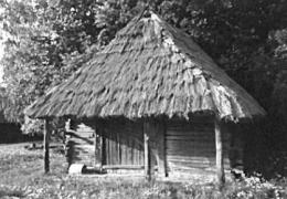Клуня сер.19 ст. з Волинської обл., НМНАПУ