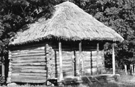 Комора 20 ст. з Луганщини, НМНАПУ