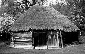 Клуня поч.20 ст. з Луганщини, НМНАПУ
