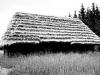 Стайня поч.20 ст. з Бойківщини, НМНАПУ